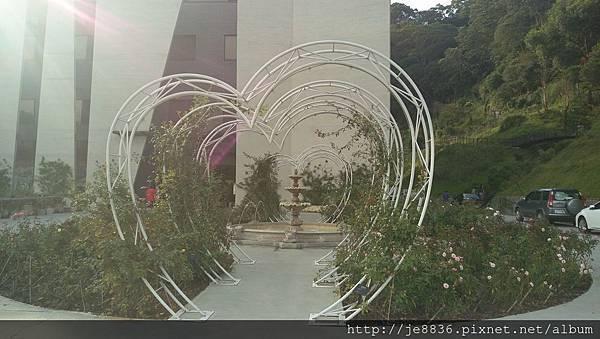 0705苗栗雅聞玫瑰花園 (1).jpg
