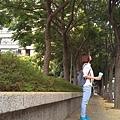 0905林口行道樹 (3).jpg