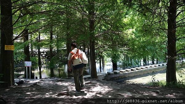 0820花蓮之旅~雲山水 (32).jpg