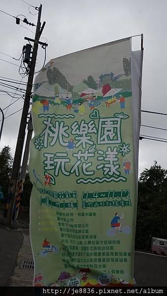 1102蘆竹花海節12.jpg