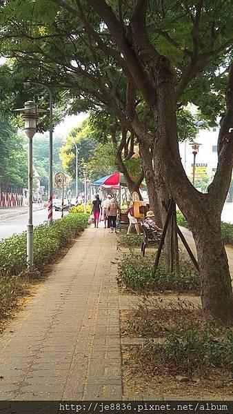 0921欒樹步道2.jpg