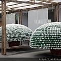 2017士林官邸菊花展14.jpg