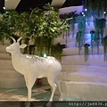 1218大江聖誕 (16).jpg
