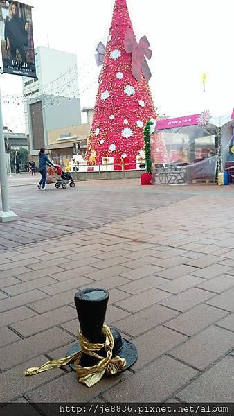 1219華泰聖誕樹 (2).jpg