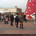 1219華泰聖誕樹 (8).jpg