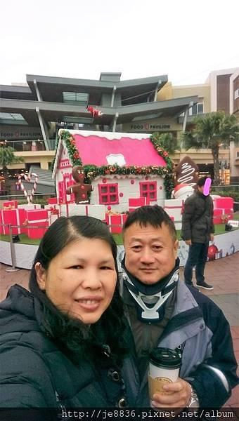 1219華泰聖誕樹 (11).jpg