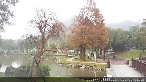 1231大湖公園6.jpg