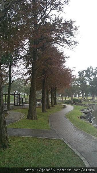 1231大湖公園18.jpg