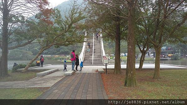 1231大湖公園25.jpg