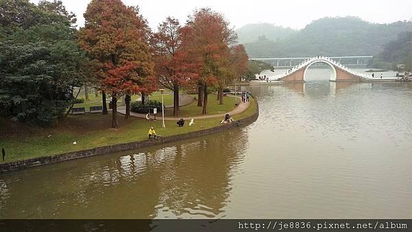 1231大湖公園31.jpg