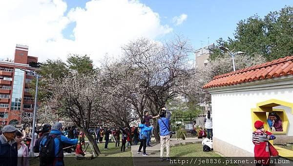 0113志成公園11.jpg