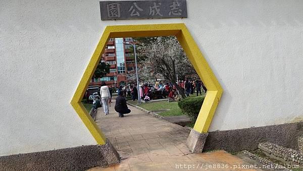0113志成公園10.jpg