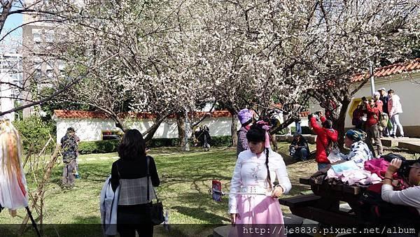 0113志成公園15.jpg
