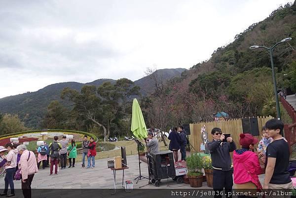 2017一月的陽明山一日遊 (61).jpg