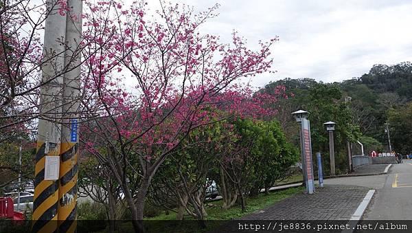 0121合興車站6.jpg