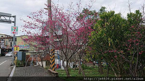 0121合興車站5.jpg