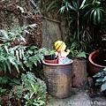 0121紅薔薇83.jpg
