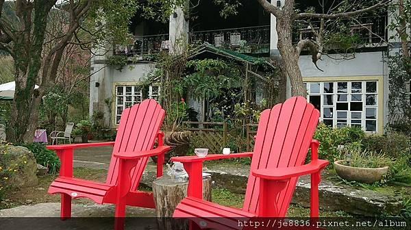 0121紅薔薇23.jpg