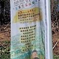 0301魯冰花02.jpg
