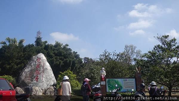 0301魯冰花4.jpg