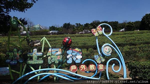 0301魯冰花13.jpg