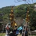 0301魯冰花25.jpg
