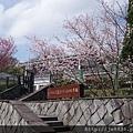 0302竹子湖 (8).jpg