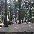 0302竹子湖 (29).jpg