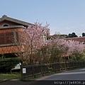 0302竹子湖 (48).jpg