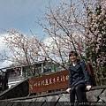 0302竹子湖 (50).jpg