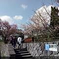 0302竹子湖 (52).jpg