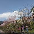 0302竹子湖 (53).jpg