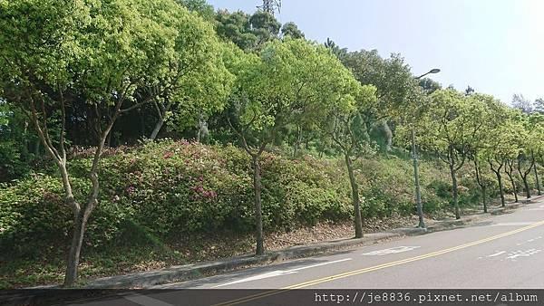 0322長庚養生村1.jpg