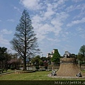 0322龜山紫藤1.jpg