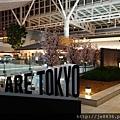 0323東京賞櫻44.jpg