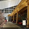 0323東京賞櫻51.jpg