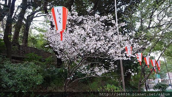0323上野公園2.jpg