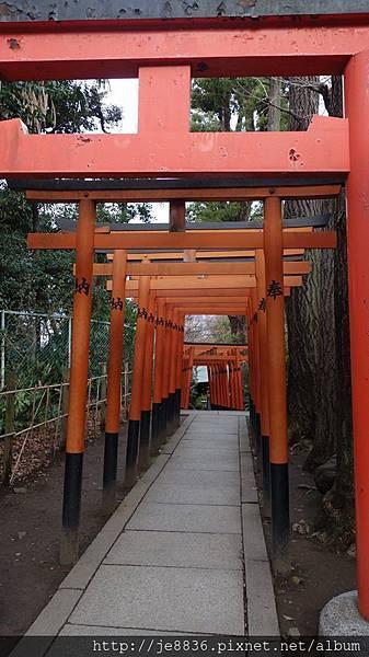 0323上野公園16.jpg
