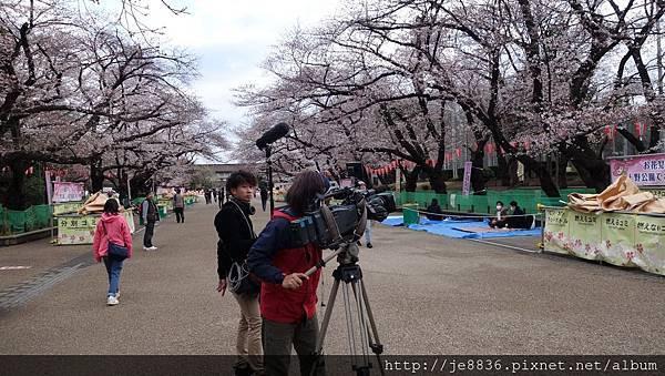 0323上野公園19.jpg