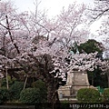 0323上野公園25.jpg
