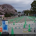 0323上野公園27.jpg