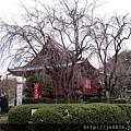 0323上野公園48.jpg