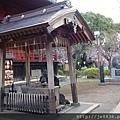 0323上野公園52.jpg