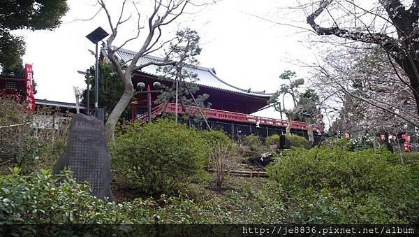 0323上野公園55.jpg