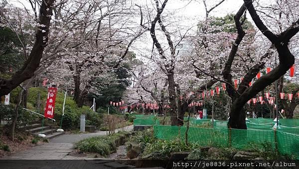 0323上野公園57.jpg