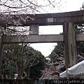 0323上野公園61.jpg