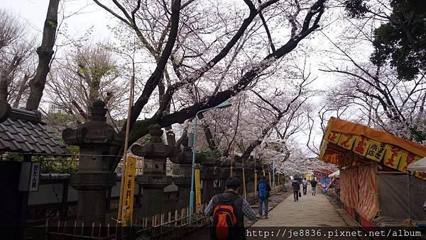 0323上野公園63.jpg