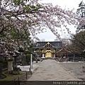 0323上野公園65.jpg