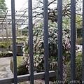 0323上野公園68.jpg