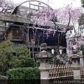0323上野公園71.jpg